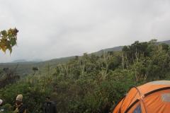 2011-08_Tanzania,_Kilimanjaro011