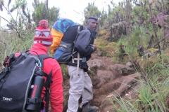 2011-08_Tanzania,_Kilimanjaro019