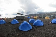2011-08_Tanzania,_Kilimanjaro042