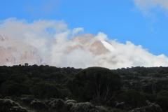 2011-08_Tanzania,_Kilimanjaro053