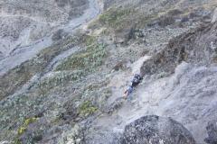 2011-08_Tanzania,_Kilimanjaro112