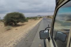 2011-08_Tanzania,_Safari041
