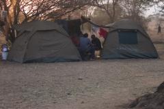 2011-08_Tanzania,_Safari438