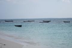 2011-08_Tanzania,_Zanzibar046