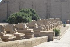 2012-03_Ferie_i_Egypten045
