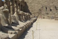 2012-03_Ferie_i_Egypten143
