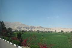 2012-03_Ferie_i_Egypten163
