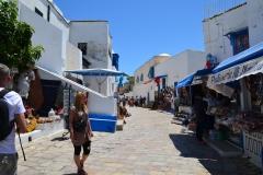 2013-06_Cruise_i_Middelhavet,_Tunis060