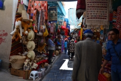 2013-06_Cruise_i_Middelhavet,_Tunis077