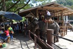 Thailand007