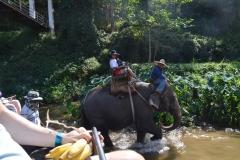 Thailand010