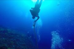 Dive 11 - Sataya01