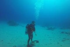 Dive 13 - Fury Shoal Abu Galawa Soghayr07