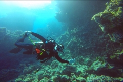 Dive 2 - Shaab Marsa Alam01