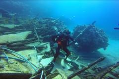 Dive 2 - Shaab Marsa Alam04