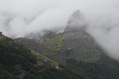 Peru, Ecuador og Galapagos - 263