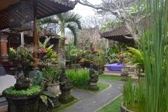 2018-07_Bali_og_Indonesien186