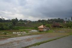 2018-07_Bali_og_Indonesien205
