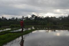 2018-07_Bali_og_Indonesien206