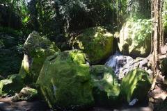2018-07_Bali_og_Indonesien239