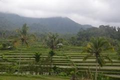 2018-07_Bali_og_Indonesien308