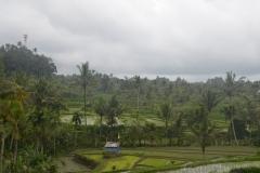 2018-07_Bali_og_Indonesien309