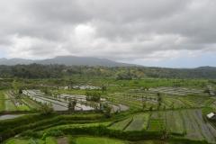 2018-07_Bali_og_Indonesien334